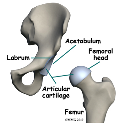 Hip Impingement What Is It And How Can One Get Rid Of It Ab